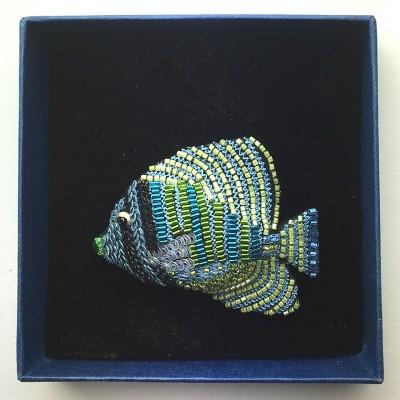 Triggerfish-20